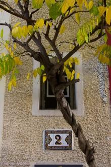 olivier metra paris