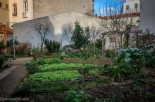 city leroy garden