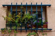 window box paris
