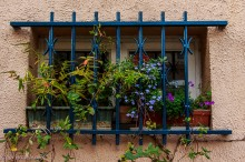 window box paris