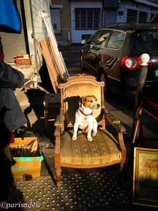paris dogs paris flea markets second hand vintage paris