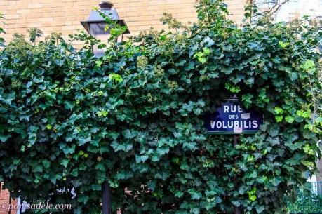 off the beaten path paris cite florale