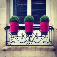 What I don't like about Paris ….
